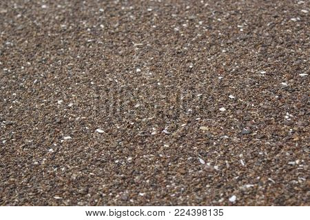 Large wet sea sand for your background