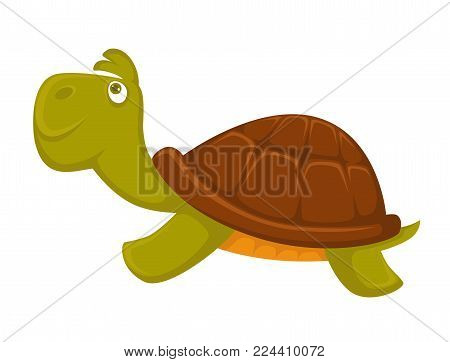 Turtle cartoon pet animal vector flat icon. Isolated funny turtle for kid, children or zoo, veterinary doctor and vet clinic design template