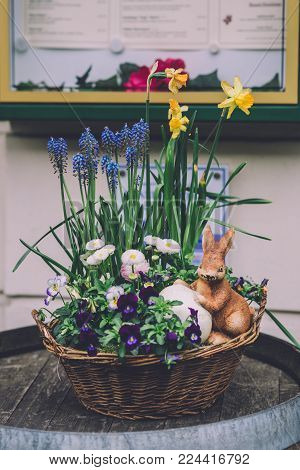 April, 12th, 2017 - Potsdam, Brandenburg, Germany. Traditional festive straw Easter basket with handmade decorations, toy rabbit with egg and spring flowers during Easter celebration in Potsdam.