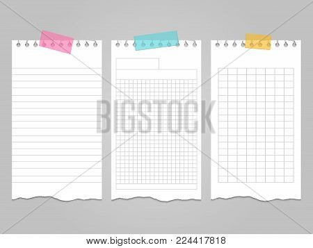 Ripped lined notebook pages templates for notes or memo. Vector illustration