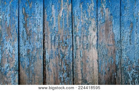 decorative background of cracked old blue paint on a wooden wall made of rough of rough boards