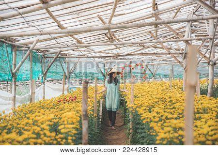 portrait of asian woman walking in between chamomile flower in the farm