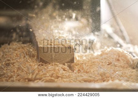 Process of sawing a board with a chain saw, industrial concept
