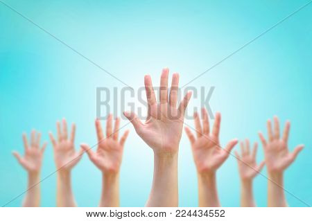 Many People Women Hands Raising Up Showing Vote, Volunteer Participation, Rights Equality Concept