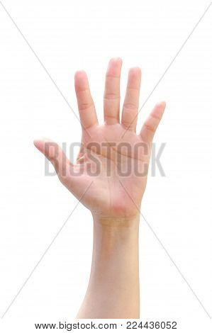 Isolated female woman human hand open palm raising up on white background expressing vote, volunteering