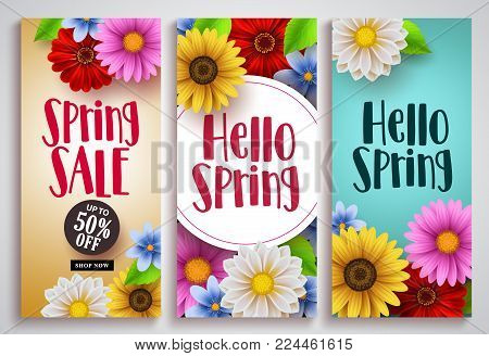 Spring sale and hello spring vector poster set designs with colorful background templates and various daisy flowers for spring season discount promotion and greeting cards. Vector illustration.