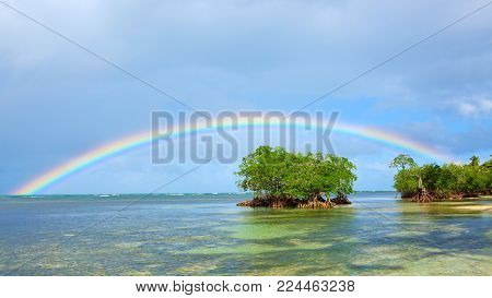 Beautiful Caribbean sea and green trees. Colorful rainbow over caribbean sea .Travel background.