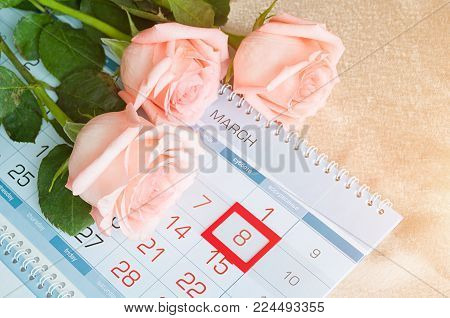 8 March card - peach roses over the calendar with framed 8 March date. Selective focus at the 8 March frame