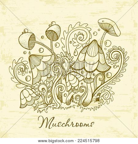 Group of decorative mushrooms. Cute mushrooms vector illustration, hand drawn collection