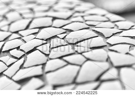 texture of pieces of egg skarlet glued to the surface