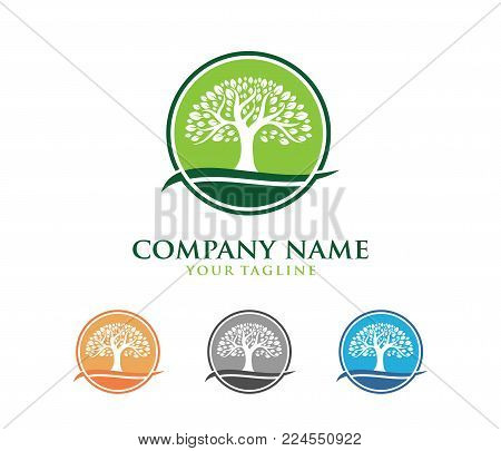 this is vector logo design illustration perfectly suitable for oak tree logo, wise and strong, house property firm, green home stay resort and another related poster