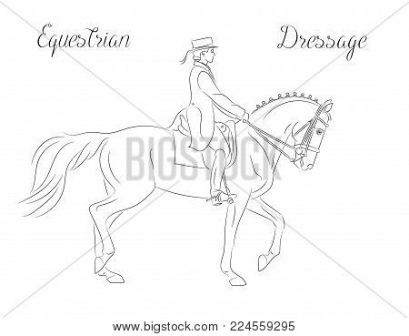Dressage horse with rider performing piaffe, equestrian sport. Black and white vector image, side view picture. Female rider performing dressage movements.