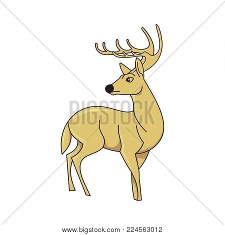 Vector element cartoon deer. Deer icon art. Deer icon eps. Deer icon Image. Deer icon logo. Deer icon sign. Deer icon flat. Deer icon design. Deer icon Vector illustration EPS.8 EPS.10