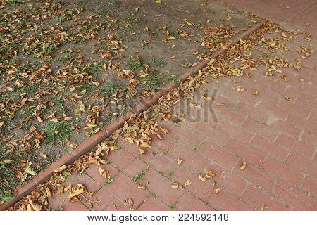 Park path in autumn atmosphere in hystorical city