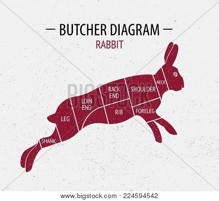 Cut of rabbit. Poster Butcher diagram for groceries, meat stores, butcher shop, farmer market. Poster for meat related theme. Rabbit silhouette.