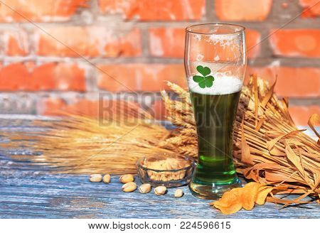Green beer for St. Patrick's Day against the background of a ceramic wall stands on an old wooden colored table along with beer ingredients - shamrock , wheat, barley and snacks - pistachios, chips