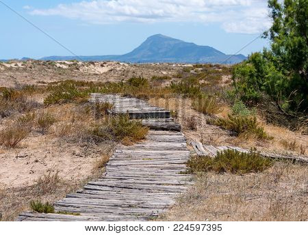 Road made of logs. Wooden walkway on the sand leading to the mountins. Nobody.