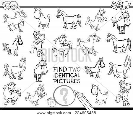 Find Two Identical Horses Educational Color Book