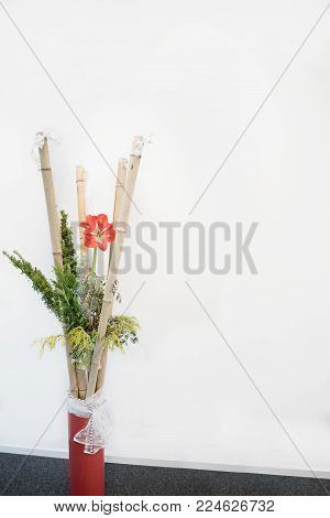 room decoration with bamboo cane, red amaryllis and green branches in a big vase. space for text.