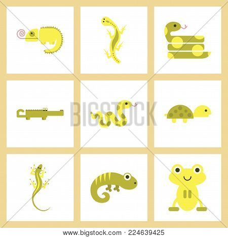assembly of flat icons exotic wild reptiles