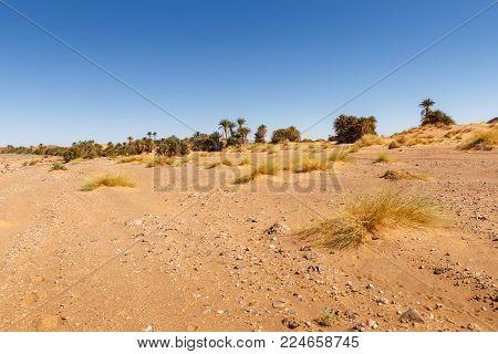 the landscape in the Sahara desert Morocco