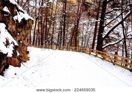 Road to the winter and touristic station Poiana Brasov, 12 km from Brasov, a town situated in Transylvania, Romania, in the center of the country