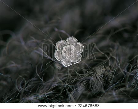 Real snowflake glittering on dark woolen background. Macro photo of real snow crystal: small star plate with glossy relief surface, fine hexagonal symmetry, simple shape and amazing inner pattern.