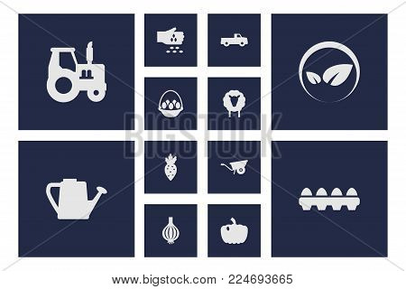 Set of 12 harvest icons set. Collection of tractor, bio sign, sow and other elements.