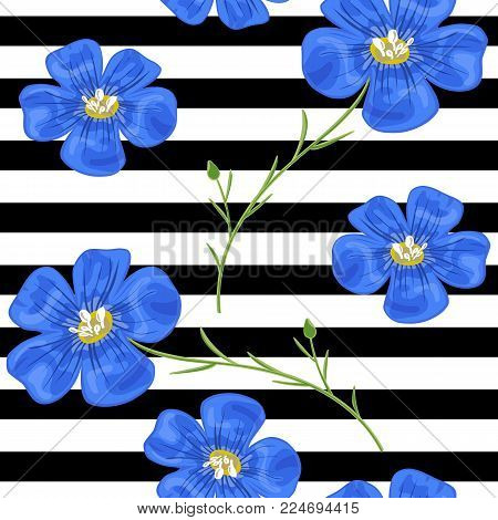Flax blue flowers. Seamless pattern. Vector illustration. Design for herbal tea, health care products, natural cosmetics, perfumery, essential oil, black and white stripes background, wrapping, prints