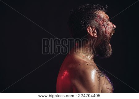 Man With Beard Shout With Anger On Black Background. Bearded Hipster With Red Blood On Face And Ches