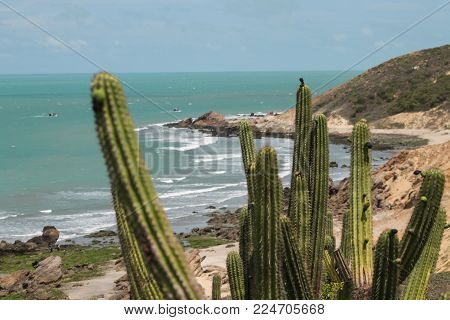 Desert Shore In Brazilian Northwest - Jericoacoara - Brazil