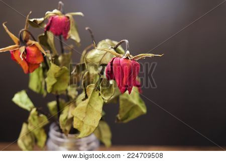 Dried roses in a vase on the wooden table on the black background.