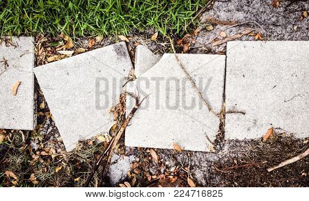 Broken cement sidewalk slabs along a path.