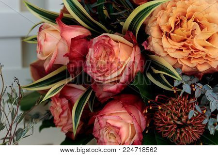 Bouquet Of Flowers Including Roses, Orchids, Pincushion Proteas And Hydrangea Flowers