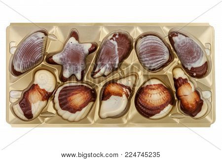 Set chocolate candies in the form of seashells, isolated on a white background with clipping paths
