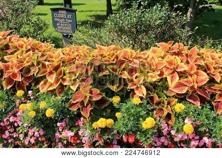 Horizontal Image Of Gorgeous Garden Filled With Plants And Flowers, With Sign Posting Hours Of Park
