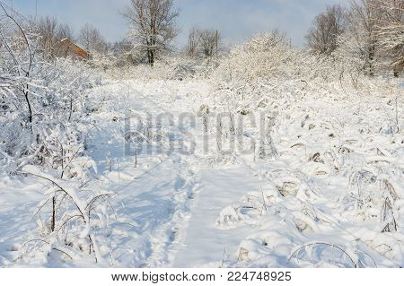 Winter landscape with path to home in deep and fresh snow