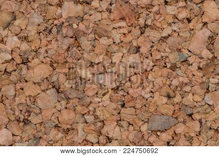 Natural cork pin board texture or background, blank, close-up