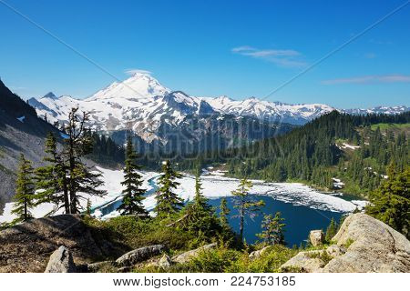 Mt. Baker recreation area, Washington, USA