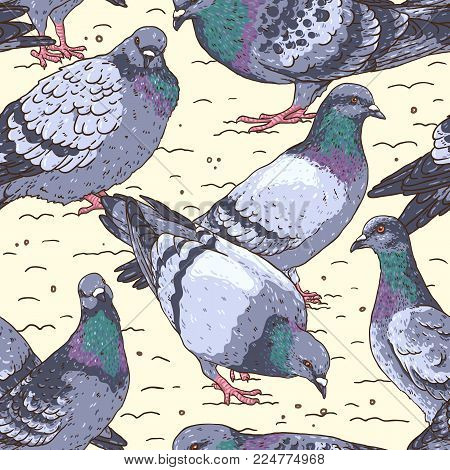 Hand-drawn seamless pattern with pigeons, Urban birds