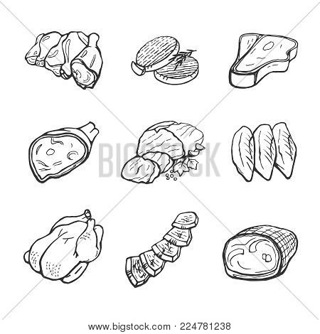 Vector set of meat, meat products. Isolated vector hand drawings on white background