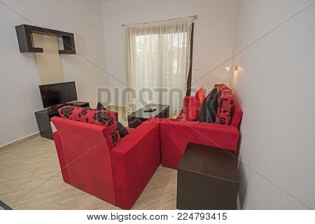 Interior design décor of an apartment living room with furniture