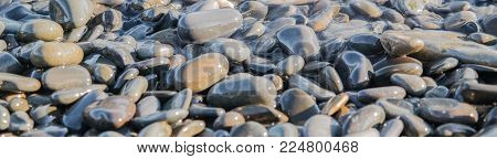 Different sizes and colors wet sea pebbles suitable for header or footer.