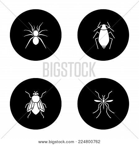 Insects glyph icons set. Spider, aphid, housefly, mosquito. Vector white silhouettes illustrations in black circles