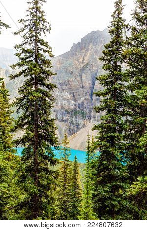 Scenic Moraine Lake as seen through a hike up the thick alpine forest of Larch Valley at Lake Louise in Banff National Park, Canada.