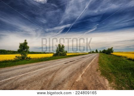 spring field. picturesque rapeseed field. road near the field. cloudy sky