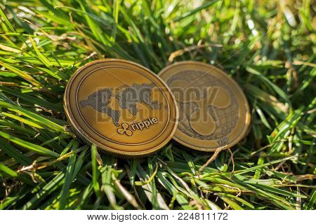 Close up of golden brown ripple coins in nature laying in the grass. Shining cryptocurrency ripple (XRP) on the daylight. New modern cryptocurrency