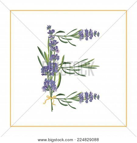 Letter E monogram. Retro sign alphabet with lavender flower initial. Watercolor style, botanical illustration isolated on white. Vintage vector font typeface