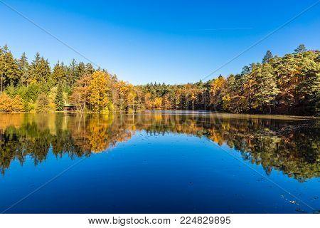 Svycar Pond And Beautiful Colorful Autumn Beeches - Voderady Beechwood, Czech Republic