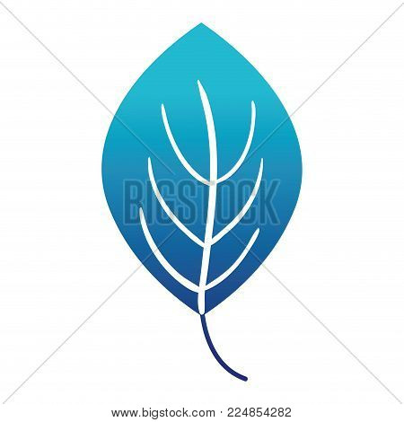 blue silhouette natural leaf plant botany design vector illustration poster
